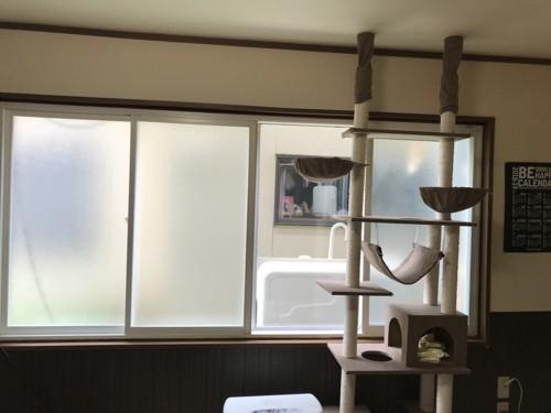 着工前の窓際環境