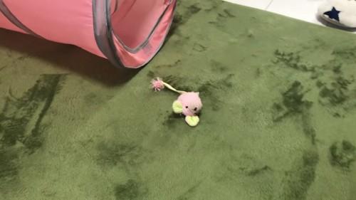 ピンク色のネズミのおもちゃ