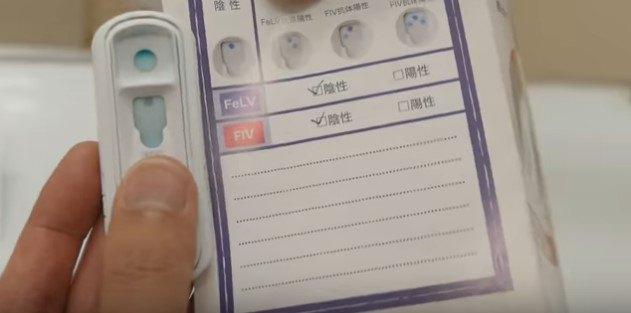 ウィルス検査検器具