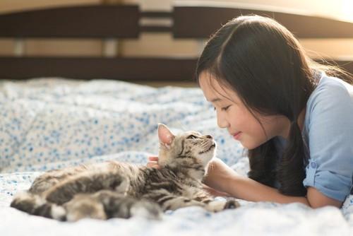 見つめ合う子どもと子猫
