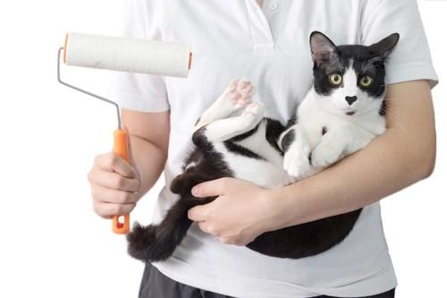 粘着クリーナーをかける人と猫