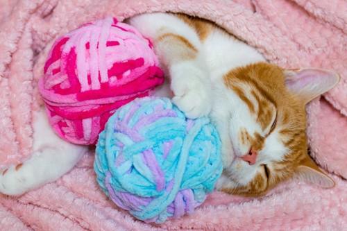 毛糸と寝転ぶ猫