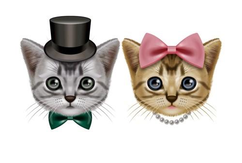 オス猫とメス猫