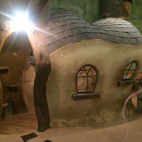 猫カフェ店内のツリーハウス