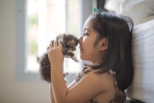 猫をキスする女の子