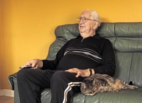 ソファーでくつろぐ歳を重ねた男性と猫