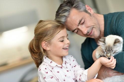 父親の抱っこしている猫を可愛がる女の子
