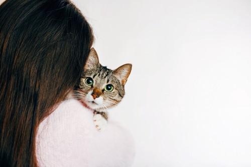 女性に抱かれている猫