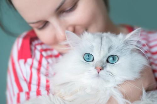 女性に抱かれたブルーの色の目のペルシャ