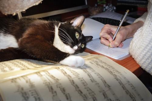 ノートにメモを取る人の手と楽譜の上で寝そべる猫