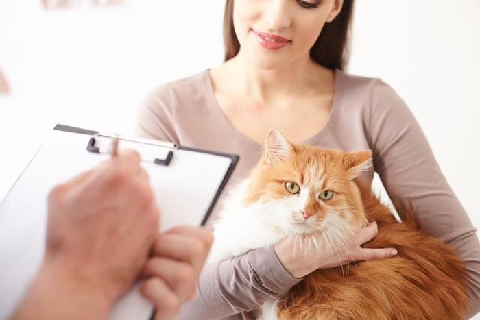 獣医に相談する女性