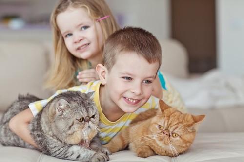 兄妹と一緒にくつろぐ二匹の猫