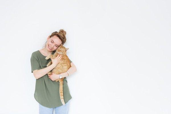 抱っこされる茶色いキジ猫