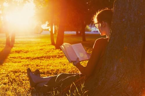 夕日の中で本を読む女性