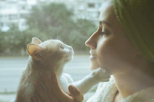 顔を近づけて見つめ合う女性と猫