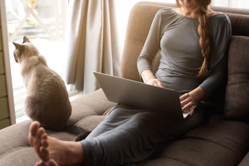 パソコンを見る女性と窓の外を見る猫