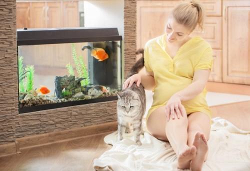 水槽のある部屋でくつろぐ女性と猫
