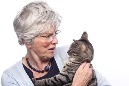 メガネをかけたシニアを見る猫