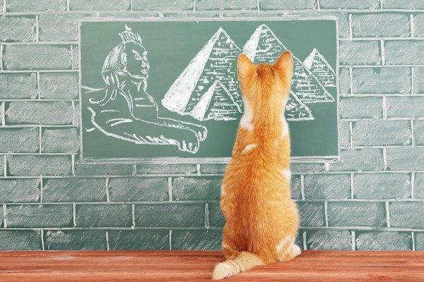 子猫と古代エジプト