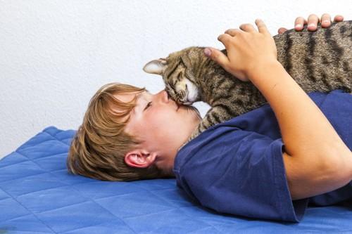 じゃれあう猫と少年