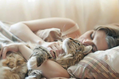 女性に抱きしめられて一緒にベッドで眠る猫