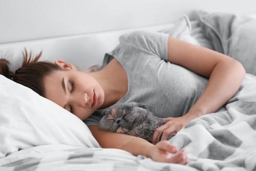 飼い主の腕枕で一緒に寝る猫