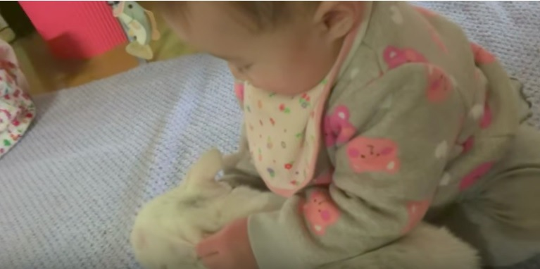 猫の耳をひっぱる赤ちゃん