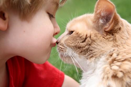 猫とキスする子供