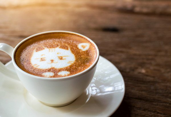 猫が描かれたコーヒー入りカップ