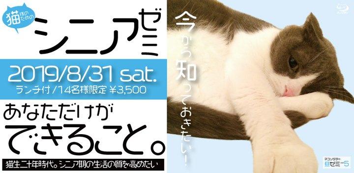 猫様のためのシニアゼミメイン画像