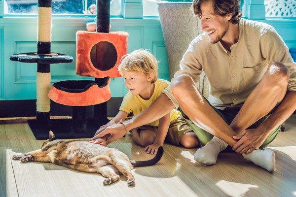 くつろぐ猫を触る親子