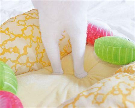 ベッドの内側はカスタードクリーム色