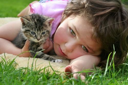 草原で寝転ぶ子供と子猫