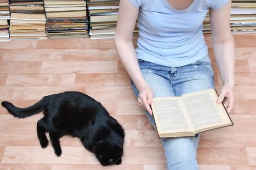 本を読む人の隣にいる黒猫