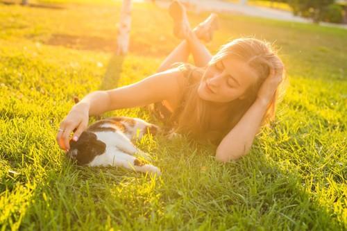 芝生の上で寝転がる女性と猫