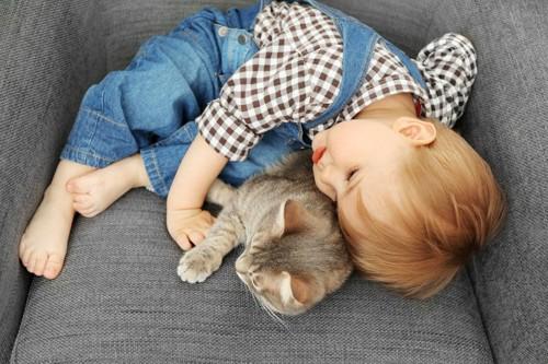 男の子と寝る猫