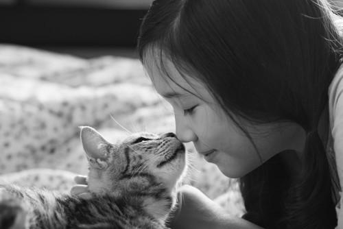 鼻をつけて挨拶をする女の子と子猫
