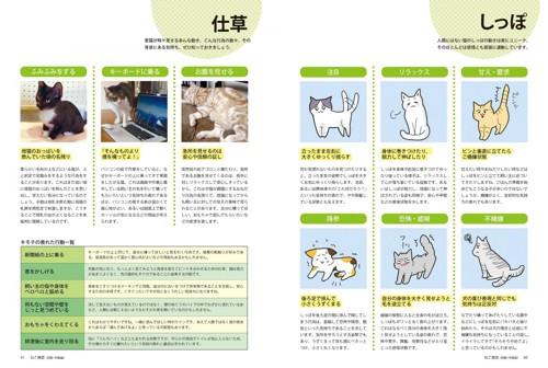 05_ねこ検定公式ガイド「猫の気持ち しっぽ、仕草」