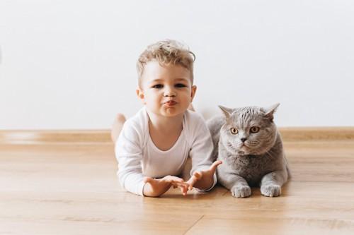 フローリングでくつろぐ猫と子供