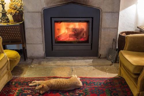 暖炉の前に寝転ぶ猫