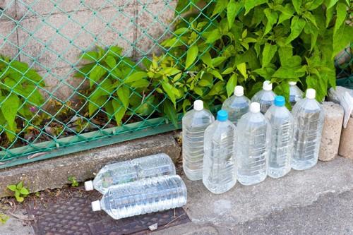 外に置いてある水入りペットボトル