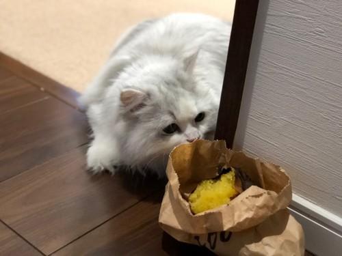 焼き芋と猫