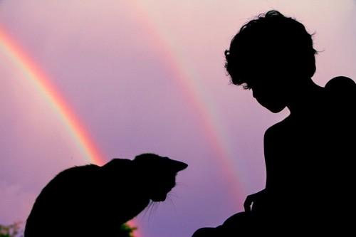 虹を背景にした少年と猫のシルエット