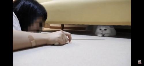 ソファの下へ