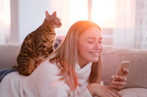 ソファーでくつろぐ女性の背中に乗る猫