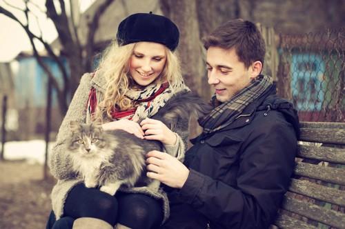 猫を可愛がる男女