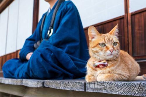 縁側で胡坐をかく人と隣で寛ぐ猫