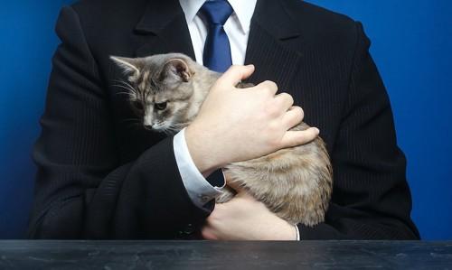猫を抱いたスーツ姿の男性