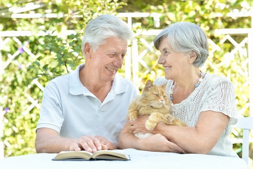 笑顔の老夫婦に抱かれた猫