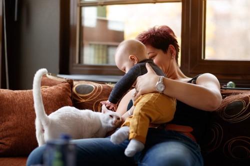 赤ちゃんと人と猫